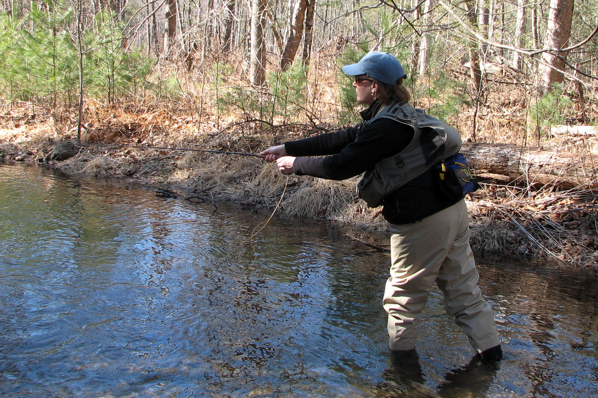 Our Public Lands (Part 3.1) – Sportsmen in Virginia.