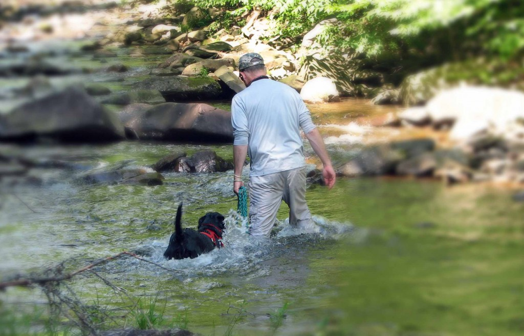 Tom and Lily search for new water